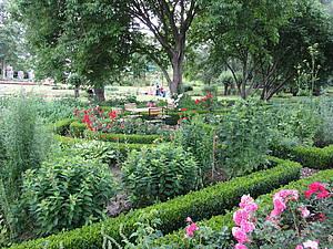 Bauerngarten Foto Koch
